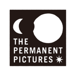 THE PERMANENT PICTURES